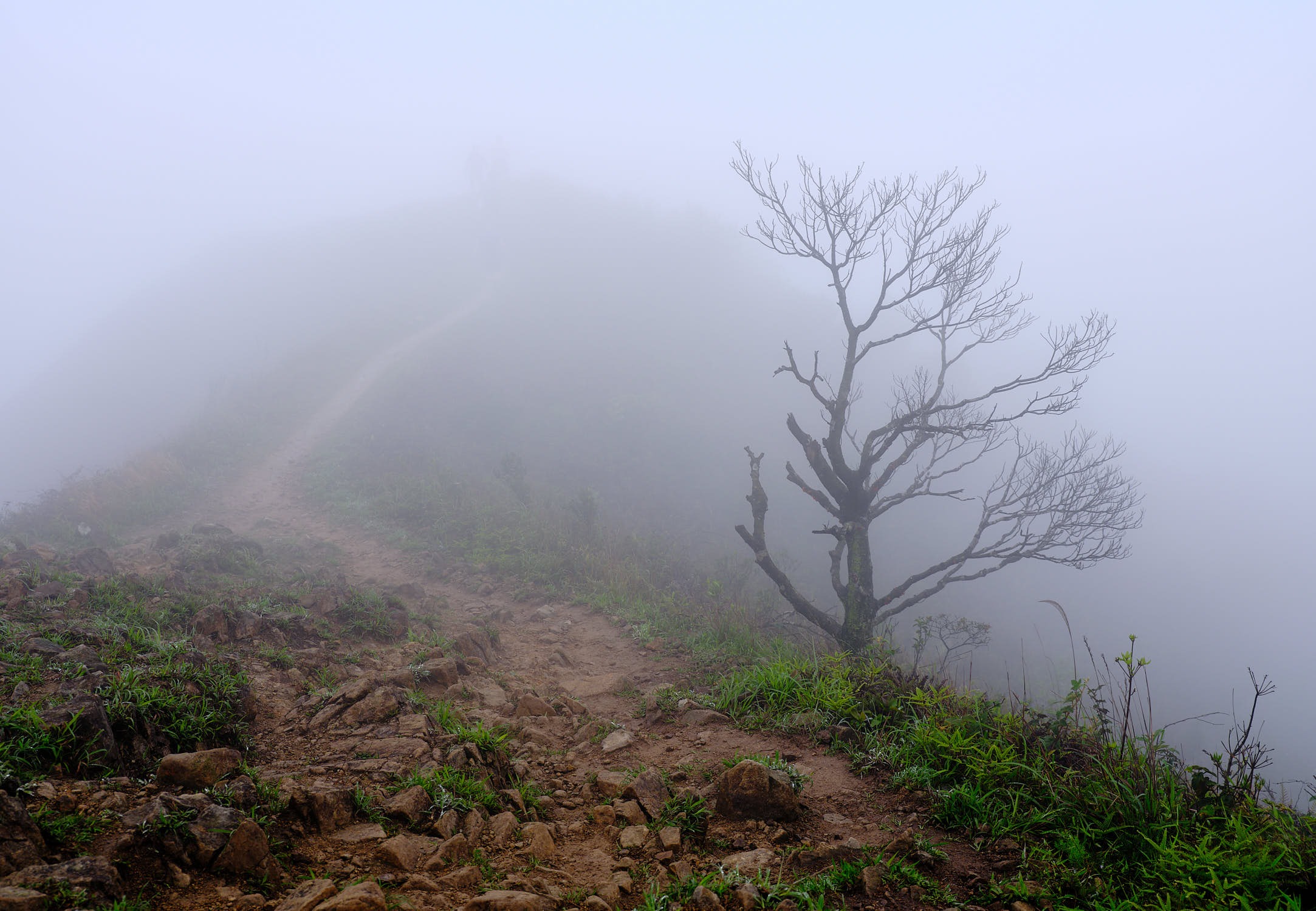 MacLehose Trail Section 4