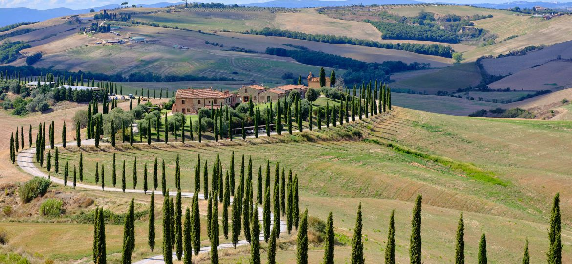 Winding road cypress trees, Val d'Orcia, Tuscany