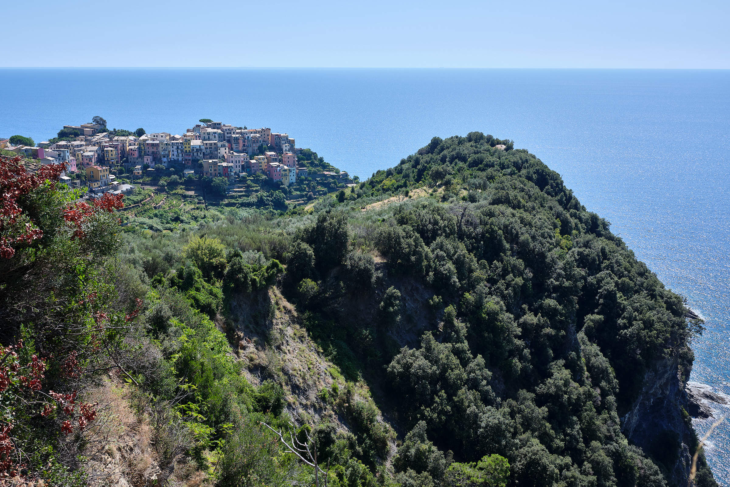 From from the hiking trail, Cinque Terre