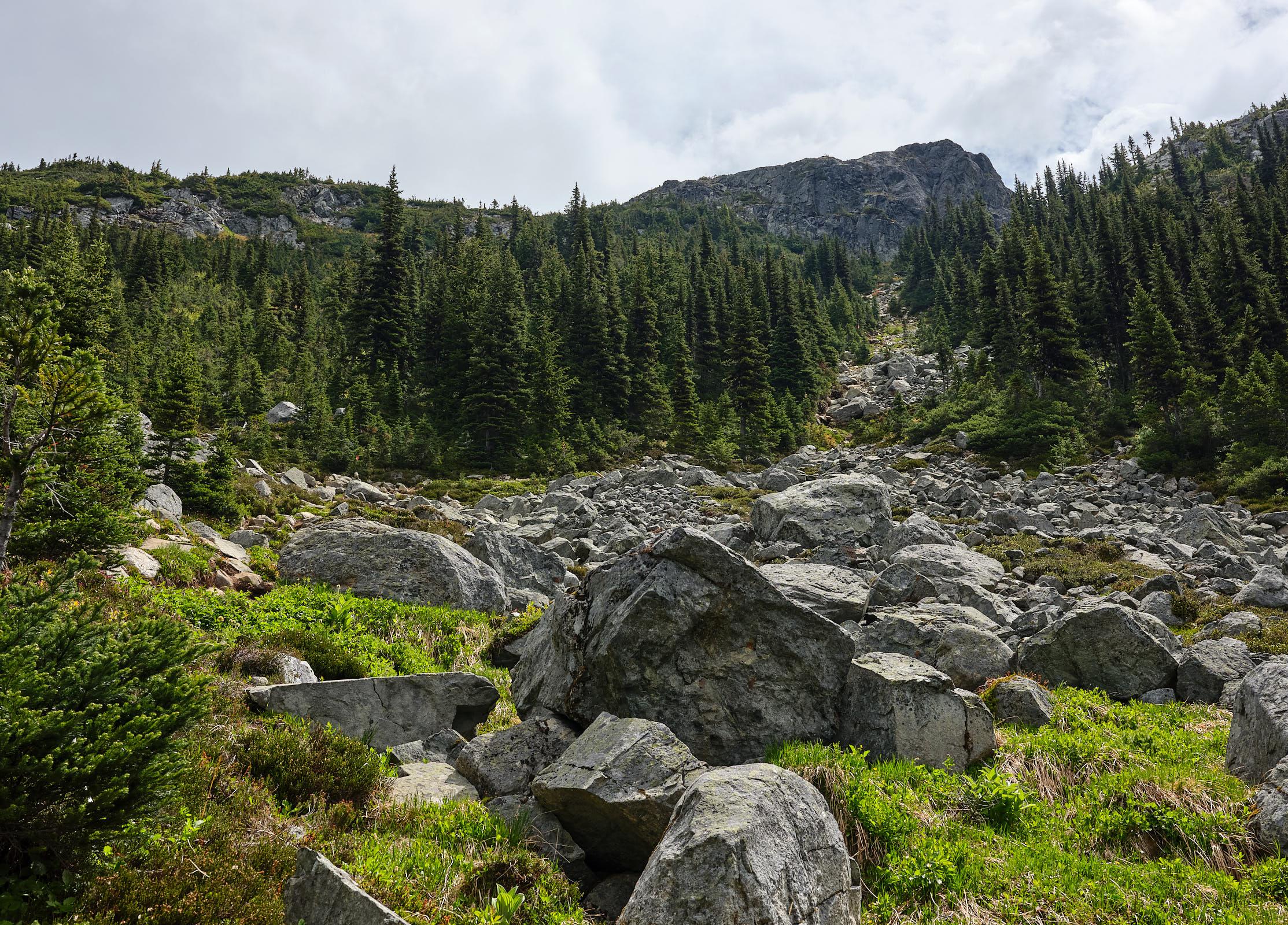 Wedgemount, Whistler, Canada