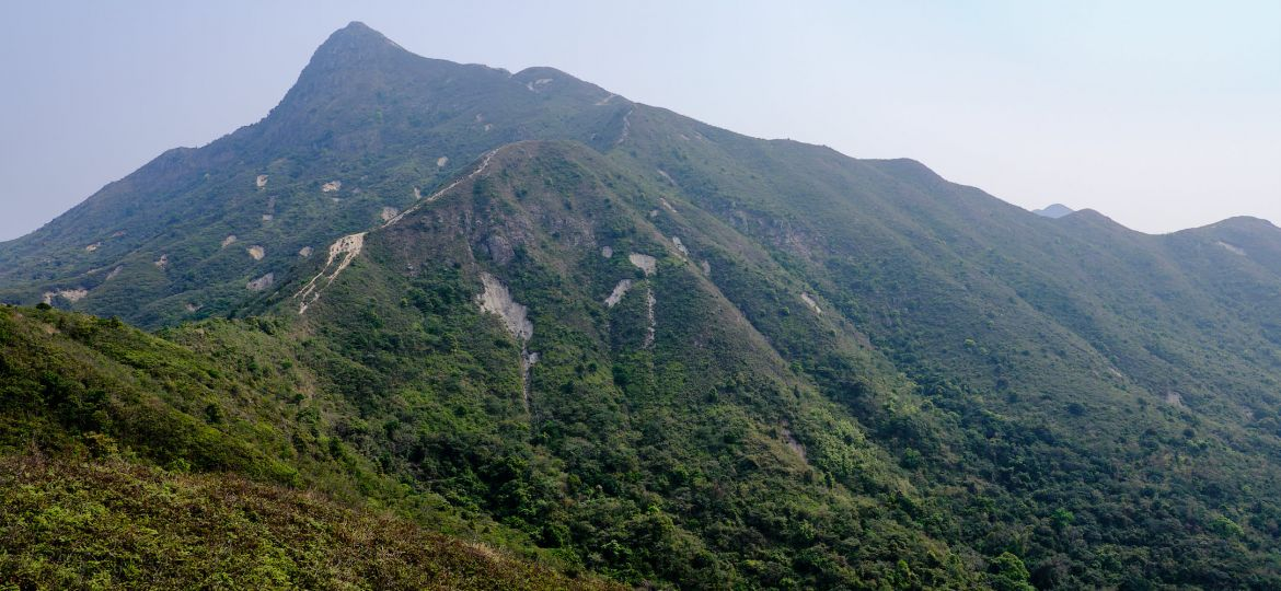 Sharp Peak Hong Kong