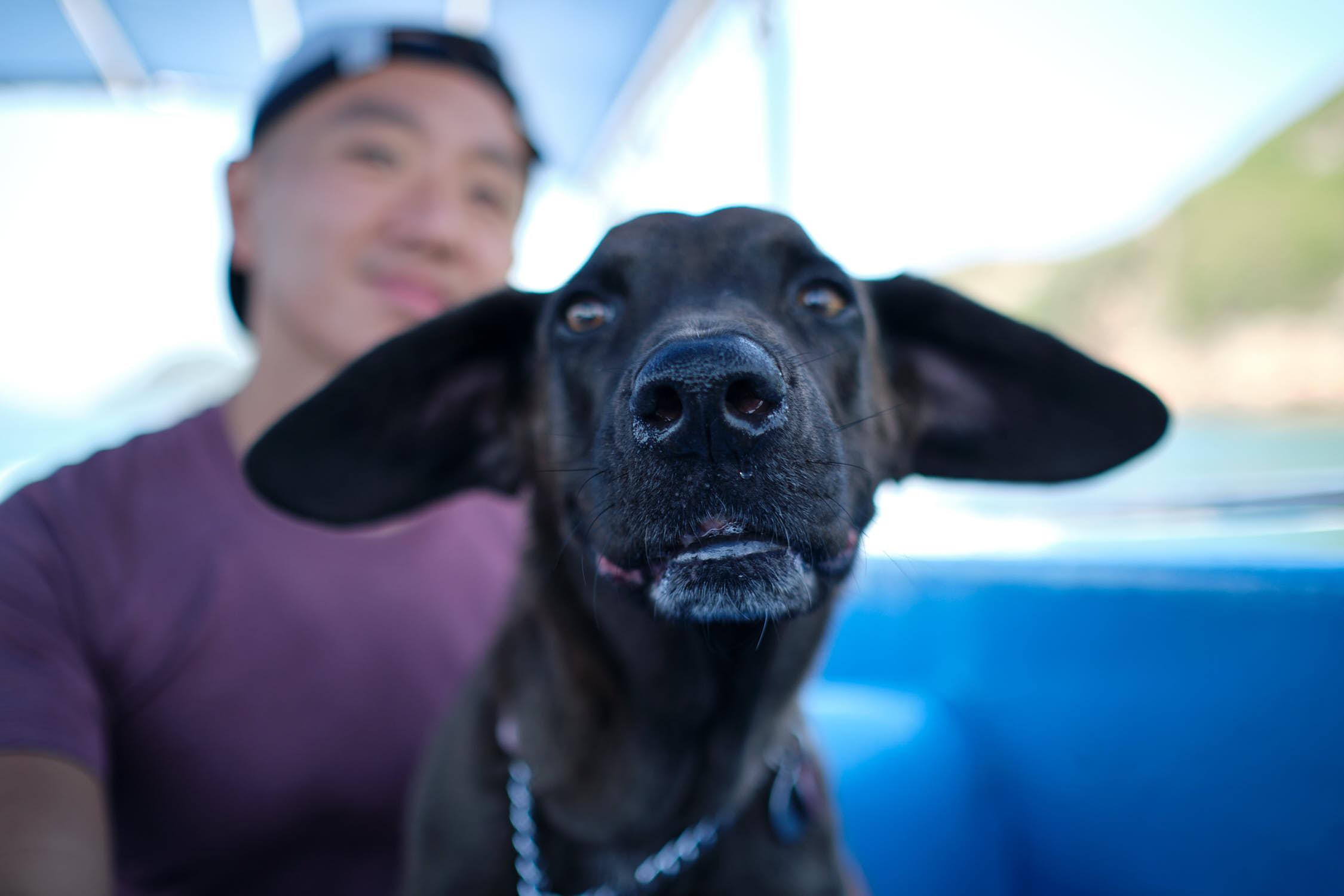 Arya terrified of the boat trip to Ham Tin Wan